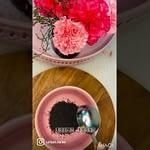 Five-dessert-recipes-using-ROSE-SYRUP-Rose-FaloodaRose-BurfiRose-CheesecakeRose.jpg